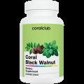Coral Black Walnut